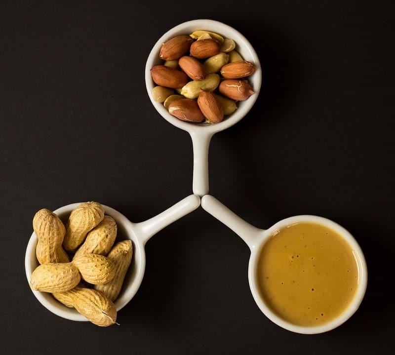 eiweiß-muskelaufbau-ernährungs-tipps