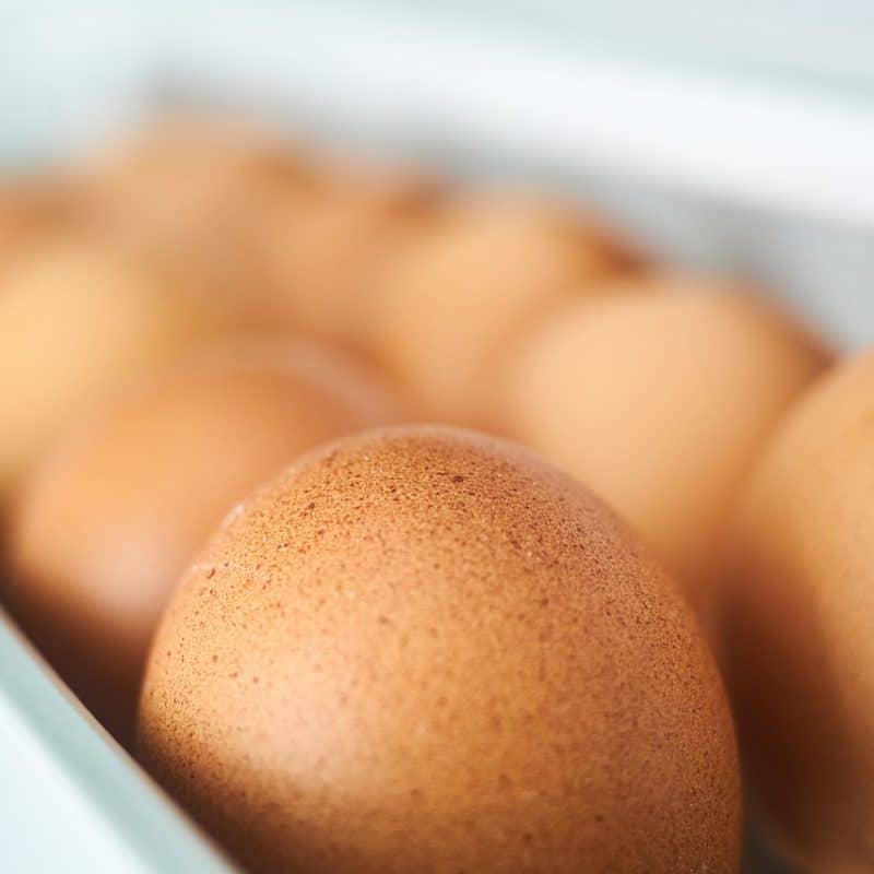 proteinreiche-ernährung-wieviel-protein-ist-zu-viel